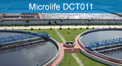 Microlife DCT011